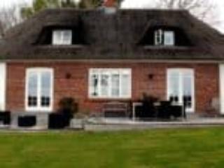 Elegante vinduer klæder smukt hus