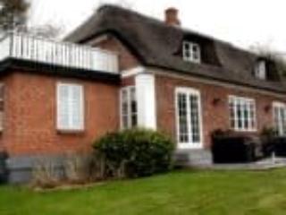 Stråtægt hus med nye vinduer